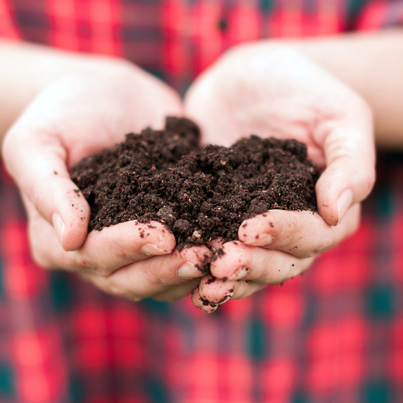 Landscaping experts in Edmonton