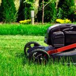 Fall Lawn Maintenance to Guarantee Healthy Soil in Spring