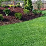 What Mulch Can Do for Your Lawn