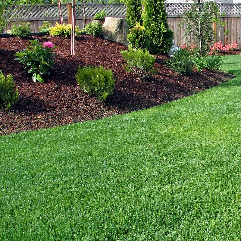 Garden With Weed Barrier Mulch