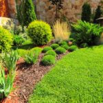 5 Spring Landscaping Ideas